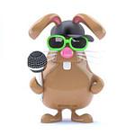Les différents modèles de microphones répondant aux exigences du DJ