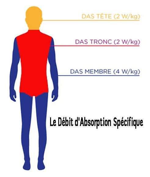 ondes électromagnétiques et la mesure du DAS